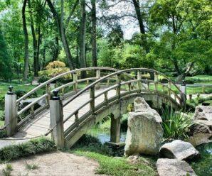 Na co si dát pozor při realizaci vašeho zahradního projektu