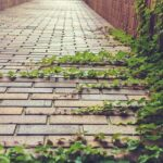 Víte, co udělat, aby byly betonové a kamenné prvky stále krásně čisté?